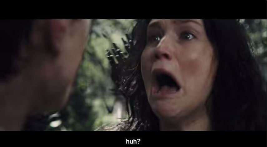 A Bad Lip Reading of Catching Fire