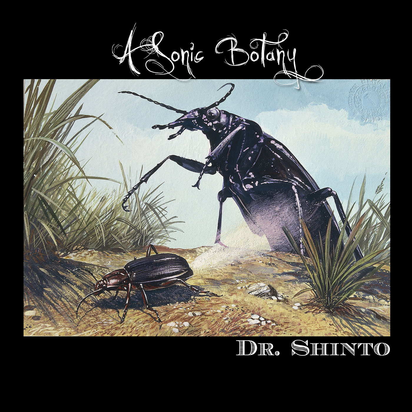 "Dr Shinto Releases ""A Sonic Botany"" and teases more releases"