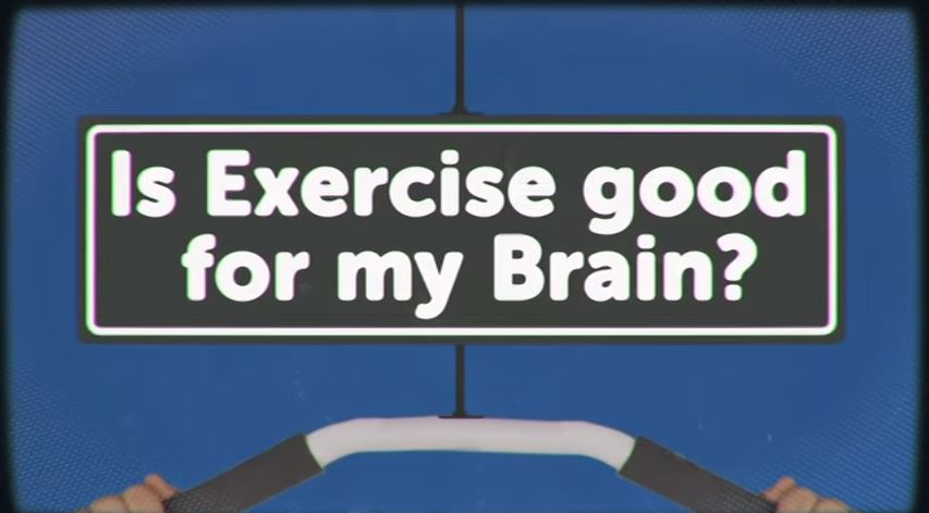 Is Exercise Good for My Brain? - HeadSqueeze