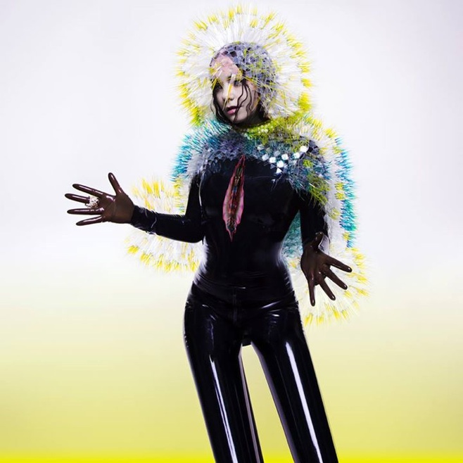 Björk's new album Vulnicura gets early release!