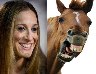 The Origin of Sarah Jessica Parker comparison to a horse