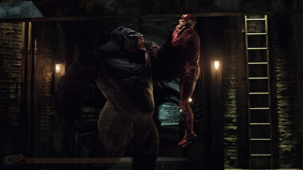The New Flash/Arrow Footage Shows Crazy Gorilla Action!