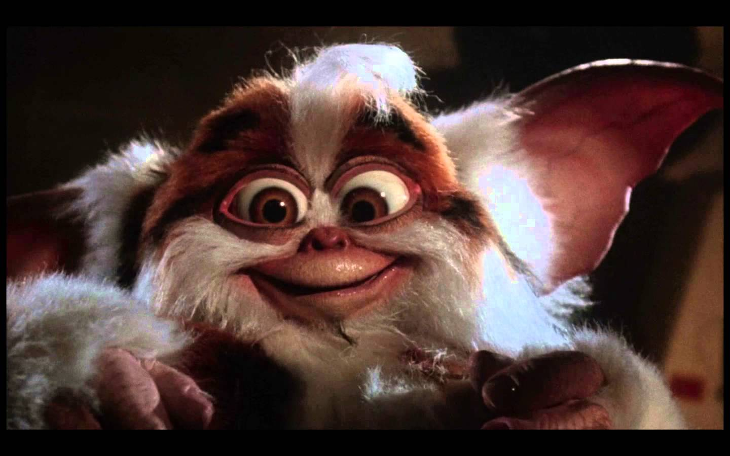 Warner Moves forward with the Gremlins Reboot