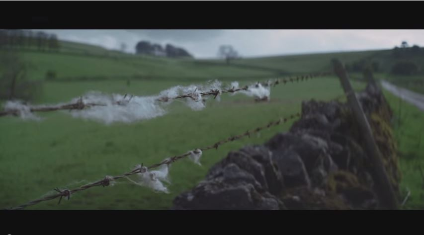 Watch the new video from Drenge - Running Wild