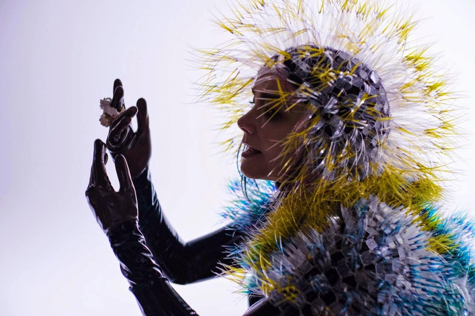 Watch Björk's 360° music video