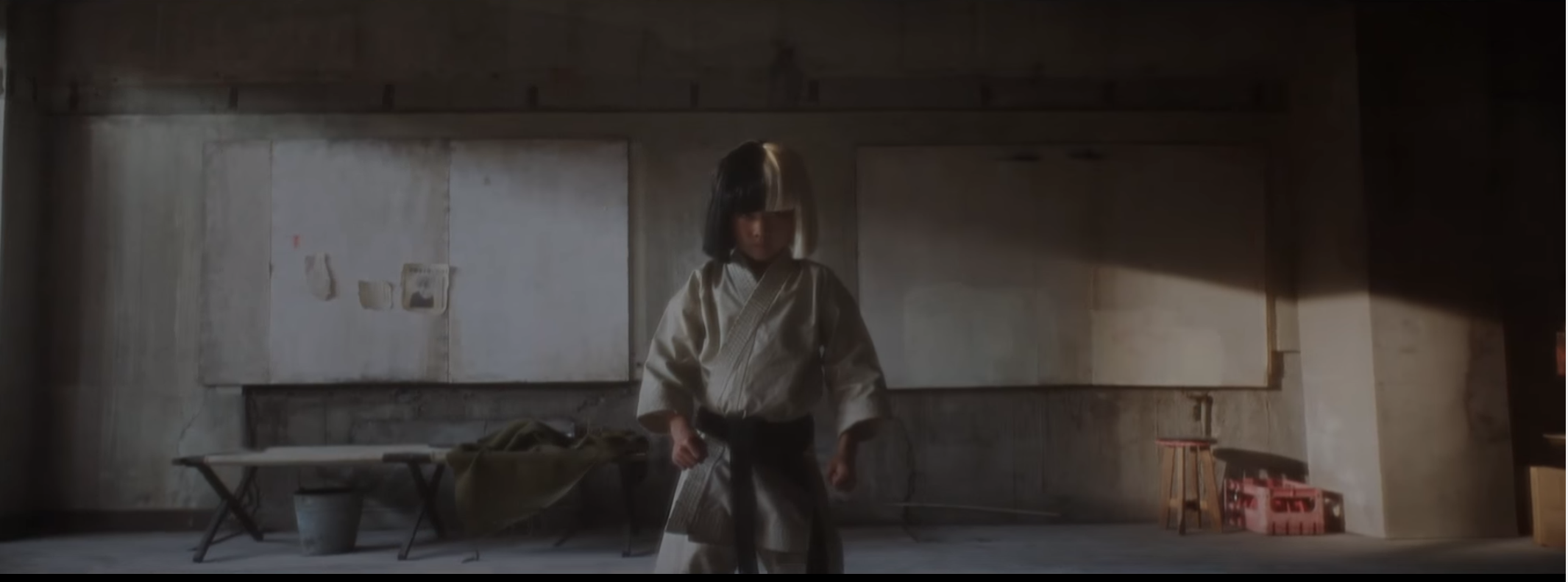 Sia´s New Video 'Alive' Keeps It Weird In A Childish Kung Fu Kind Of Way