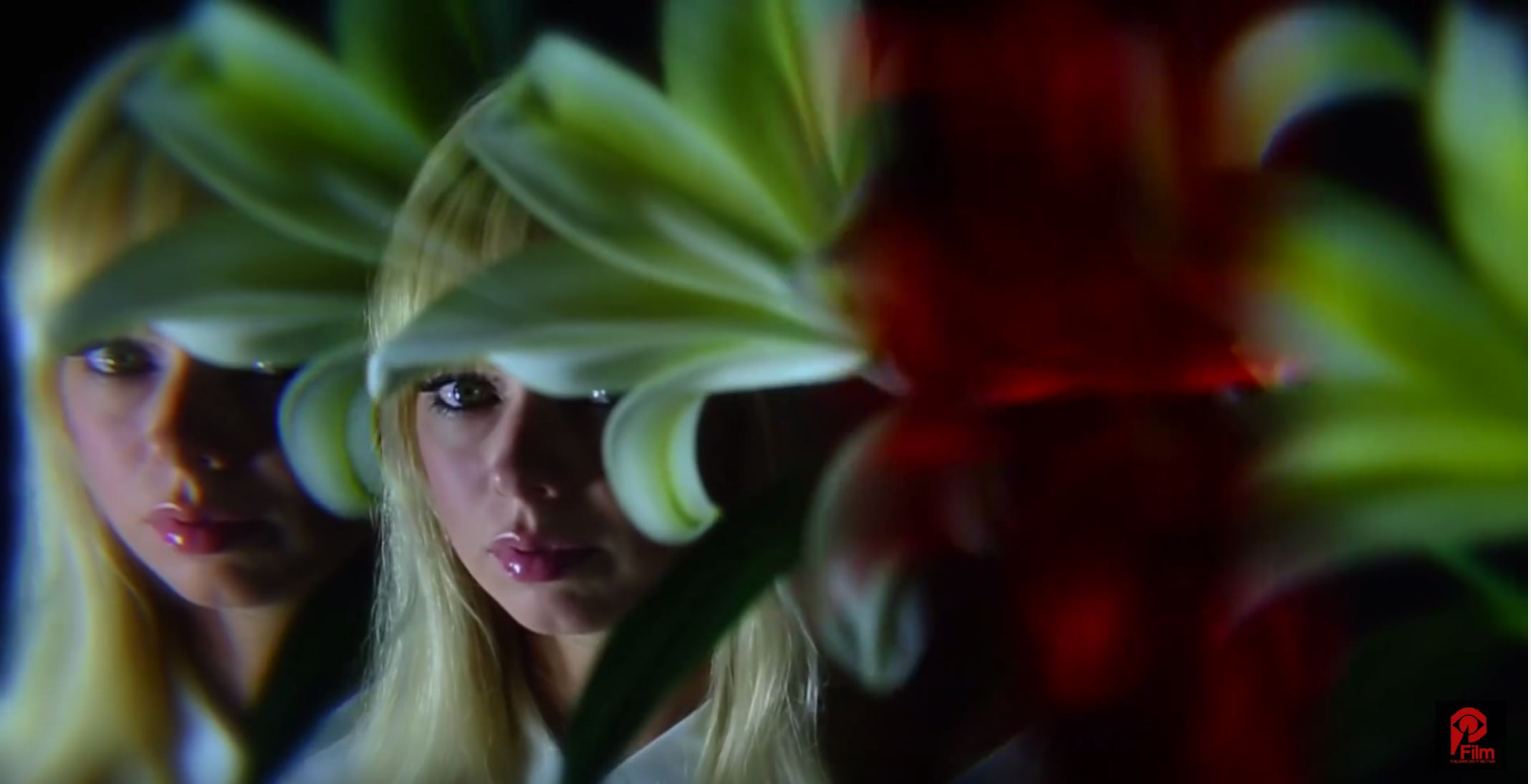 Finally some news about Chromatics new album along with a new video!